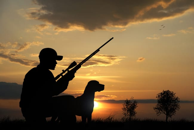 Choosing Your Perfect Hunting Companion: Which Rifle is For You?